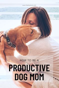 Looking for the perfect dog mom routine ideas? Click this pin to find out the secret to being more productive as a dog mom as well as how to keep your house clean with dogs! #ProductivityAesthetic #ProductivityQuotes #ProductivityTips #ProductivityPlanner #ProductivityHacks #DogMom Dog Training Techniques, Dog Training Tips, Dog House Kit, Dog Food Delivery, Living With Dogs, Funny Dog Memes, Dog Care Tips, Diy Dog, Pet Lovers