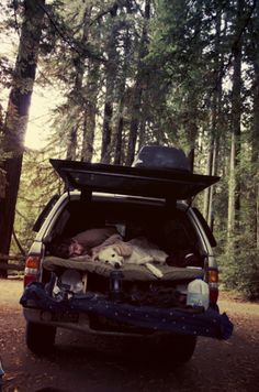 Back in September I went up to Northern California ( Hayfork, Arcata, Eureka, Avenue of the Giants… and back down to SF)… Here's a few images from the trip…(alexandravalenti.com)