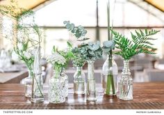 Take a look at 15 inspiring botanical wedding centerpieces in the photos below and get ideas for your wedding decoration! Muted Green Plants in Varied Glass Bottle Vases Succulent Wedding Centerpieces, Bottle Centerpieces, Simple Centerpieces, Wedding Table Decorations, Wedding Bouquets, Greenery Centerpiece, Wedding Vases, Bottle Decorations, White Flower Centerpieces