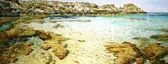Port Hedland Courthouse Gallery : Exhibitions : Larry Mitchell & Yinjaa-Barni Art Art Object, Western Australia, Exhibitions, Love Art, Artsy Fartsy, Larry, Artists, Island, Gallery