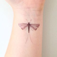 mayfly tattoo - Google Search