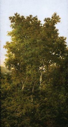 Ovidio Murguía - Paisaxe: Árbores; c. 1895.