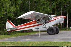 Piper Super Cub with bush tires: Dave