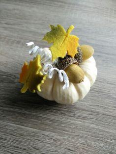Witte pompoen versiert met herfst deco