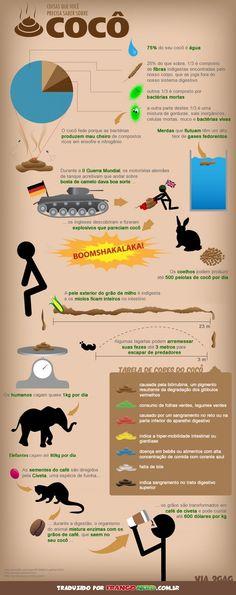 Coisas que você precisa saber sobre Cocô