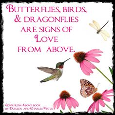 Ideas Humming Bird Quotes Memories For 2019 Dragonfly Quotes, Butterfly Quotes, You Are My Moon, Miss My Mom, Angels In Heaven, Thats The Way, Love Signs, Me Quotes, Qoutes