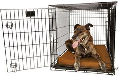 Big Barker Orthopedic 4 Dog Crate Pad 42 x 28 Waterproof Tear Resistant Thick Heavy Duty Tough Washable Cover Luxury Orthopedic Support Foam inside Made in USA * You can get additional details at the image link. (This is an affiliate link) Large Dogs, Small Dogs, Big Dogs, Dog Crate Pads, Bed Mats, Whippet, Doge, Pet Supplies, Your Dog
