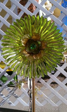 Green and gold plate flower