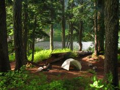 Camping in the woods by a lake