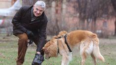 Thomas Schäfer-Elmayers #Hund Rex beisst einen Terrier Mischling tot.