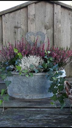 Garden Boxes, Garden Planters, Garden Art, Farmhouse Landscaping, Front Yard Landscaping, Landscaping Ideas, Back Gardens, Outdoor Gardens, Beautiful Gardens