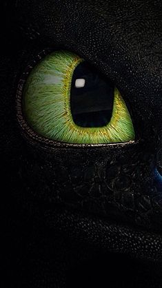 How to train your dragon toothless night fury Ideas Dragon Wallpaper Iphone, Toothless Wallpaper, Disney Phone Wallpaper, Cat Wallpaper, Cartoon Wallpaper, Retina Wallpaper, Mobile Wallpaper, Wallpaper Backgrounds, Httyd Dragons