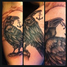 Raven and anchor
