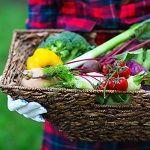 A természetben mindenre van megoldás Picnic, Drinks, Health, Van, Outdoor, Food, Turmeric, Drinking, Outdoors