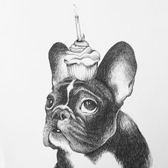 French Bulldog Pictures, Cute French Bulldog, Boston Terrier, Dogs, Animals, Art, Nice Asses, Art Background, Boston Terriers