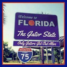 Fla Gators, Uf Gator, Florida Gators Football, Florida Sunshine, Sunshine State, College Life, College Sport, Orlando Strong, Old Florida