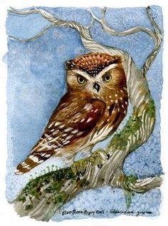'Northern Pygmy Owl' by Diana Sudyka