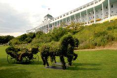 Garden topiary at The Grand Hotel, Mackinac Island. How beautiful!