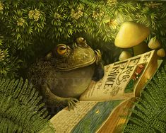 Kim Parkhurst.    Under the hedgerow, a little toad reads his Fairy Tale book about The Frog Prince. Night is falling, light is fading .... until a firefly casts his warm light for Toad to read by.