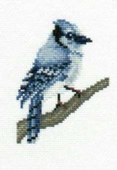 Blue Jay counted cross-stitch chart  Designed by Elizabeth Lisa Overduin  Stitch Count: 60H x 45W  Whole Stitches Only    This counted