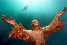 Rick Loomis image of Jesus-- actually a real-life undersea photo --