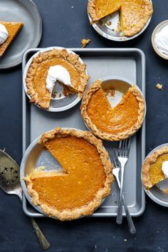 Which kind of squash makes the best homemade pumpkin pie recipe? Find out here!