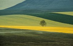 Franco Fontana, Basilicata Landscape, Italy 1978. Courtesy Fondazione MAXX