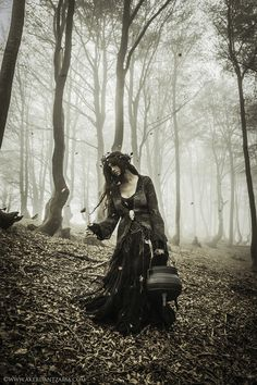 Forest Witch Cauldron, Victoria Francés