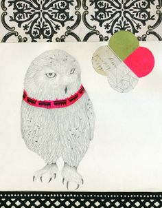 lisa congdon snowy owl print via gifted magazine