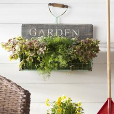 3 Small Garden DIYs to Try This Weekend |  Wall Display | Wayfair