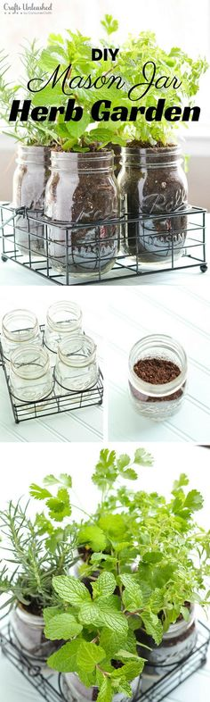 DIY Mason Jar Herb Garden.