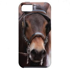 Bridled horse iPhone 5 case iPhone 5 Cover