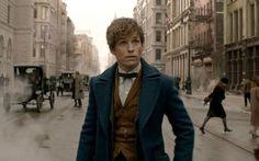 'Fantastic Beasts and Where To Find Them' is gebaseerd op het gelijknamige boek van J.K. Rowling. In de film trekt Newt Scamander naar New York samen met een koffer die gevuld is met magische wezens. Wanneer de koffer plots geopend wordt, brengt dat een heleboel chaos met zich mee.
