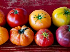 The 4 Types of Tomatoes, and How to Use Them | FN Dish – Food Network Blog https://link.crwd.fr/lou
