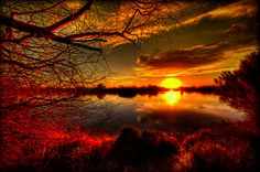 thewonderlandslondon: Arizona Sunset.