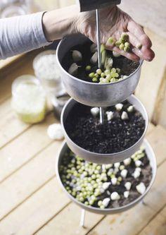 kuva Acai Bowl, Diy Crafts, Breakfast, Food, Zero Waste, Garden Ideas, Diy Ideas, Dreams, Cats