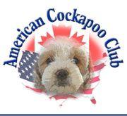 Cockapoo puppies and cockapoo breeders - Cockapoos in the US and Canada - American Cockapoo Club