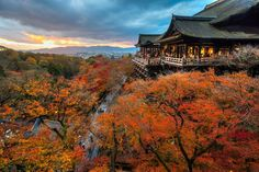 Fall colors, Kiyomizu-dera Temple in Kyoto