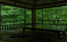 Green garden by RyujiKawamura. @go4fotos