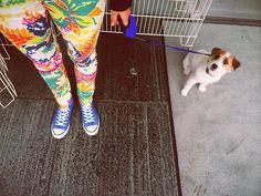 """someone is walking milli in """"by malene birger"""" floral pants Malene Birger, Floral Pants, Walking, Cute, How To Wear, Kawaii, Walks, Hiking"""