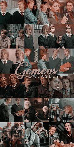 Harry Potter Poster, Harry Potter Tumblr, Harry Potter Pictures, Harry Potter Cast, Harry Potter Fan Art, Harry Potter Fandom, Harry Potter Characters, Magia Harry Potter, Mundo Harry Potter