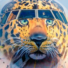 Rossiya's new big cat: Amur Leopard on B777 EI-UNP: