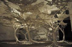 by designer Tom price: Cherry tree