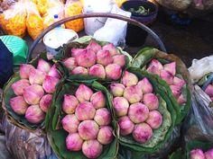 Thailanda mea sau cum să iubești aproapele. Lonely Planet, Sprouts, Vegetables, Food, Essen, Vegetable Recipes, Meals, Yemek, Veggies