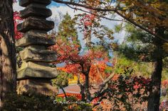 The 13 stone pagoda (sekitō-石塔) and two story pagoda at the Shōbō-ji (正法寺) During the #Autumn Season of 2013 in #Kyoto!
