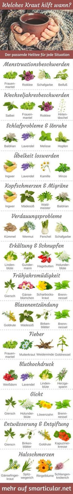 Which herb helps when? 13 Suffering and the right healing tea- Welches Kraut hilft wann? 13 Leiden und der passende Heiltee For almost every ailment, there is a healing tea that can provide you with relief without tablets and helps you to feel better. Herbal Remedies, Natural Remedies, Leiden, Bebidas Detox, Nutrition, Fitness Workouts, Good To Know, Feel Better, How To Stay Healthy
