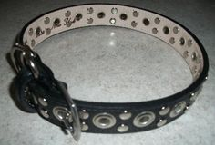 leather dog collar from Around the Collar