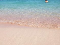 Pink Beach In Flores NTT, Indonesia !