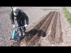 Hand tool for potatoes planting in furrow and hilling. Classical plow works for trimming and turnover layer. Unlike classical plow,double sided dump fulfille. Aquaponics System, Hydroponics, Farm Tools, Garden Tools, Dark Red Hair With Brown, Brown Hair, Metal Fabrication Tools, Agricultural Tools, Bird Silhouette