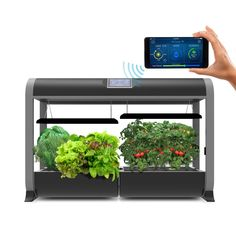 24 Personal Home Grow System By Future Tech Farm Horti 640 x 480